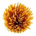 Uncooked italian spaghetti. Royalty Free Stock Image