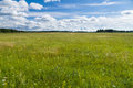 Uncultivated countryside field Royalty Free Stock Photo