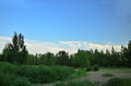 Under the blue sky and white clouds trees green Royalty Free Stock Photo
