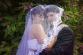 Under bride s veil young groom gets acacia background Royalty Free Stock Images
