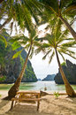 Under Coconut Palms Royalty Free Stock Photos