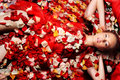 Under red petals Stock Photography