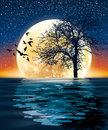 Huge moon and a tree on the water