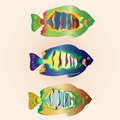 Undersea set of colorful fish Royalty Free Stock Image