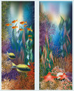 Underwater banners with starfish vector Royalty Free Stock Photography