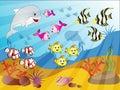 Underwater Fish Crowd