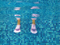 Underwater legs Royalty Free Stock Photography