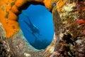 Underwater photographer Stock Image