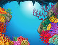 Underwater scene with coral reef in cave