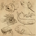 Underwater sea life vector set no hand drawn collection of an illustrations description each drawing comprise of two basic layers Stock Photo