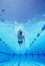 Underwater shot of young male athlete doing backstroke in swimming pool