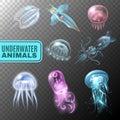 Underwater Transparent Icon Set