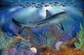 Underwater tropical wallpaper with Shark