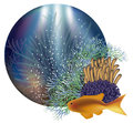 Underwater world banner vector illustration Stock Image