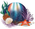 Underwater world card with starfish vector illustration Stock Photos
