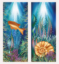 Underwater world two banners with golden fish and seashell vector Stock Photo