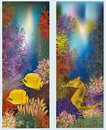 Underwater world vertical banners vector illustration Stock Photography