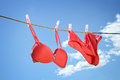Underwear hanging on clothesline outside Royalty Free Stock Photo