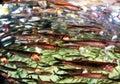 Une école des anchois Image libre de droits