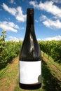 Une bouteille de vin avec une scène de vigne Photographie stock