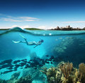 Ung kvinna som snorkeling i korallreven i det tropiska havet Arkivfoton