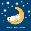 Unicorn asleep on the moon
