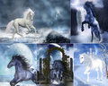 Unicorn collage Stock Image