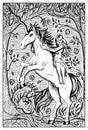 Unicorn. Engraved fantasy illustration