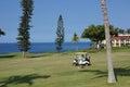 Unidentified golfers enjoy a game of golf Royalty Free Stock Photos