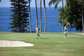 Unidentified golfers enjoy a game of golf Royalty Free Stock Image