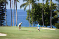 Unidentified golfers enjoy a game of golf Stock Photos