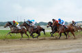 Unidentified horses and jockeys galloping in race at the Belgrade Hippodrome on Jun 19, 2016 in Belgrade, Serbia