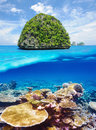 Uninhabited island with coral reef underwater view beautiful in thailand bottom and above water split Royalty Free Stock Photography