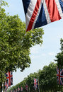 Union jack flags on mall hung from trees lining the london england Stock Images