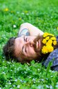 Unite with nature concept. Bearded man with dandelion flowers lay on meadow, grass background. Man with beard on smiling Royalty Free Stock Photo