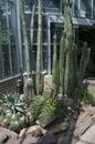 United States Botanic Garden Royalty Free Stock Photo