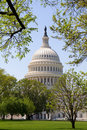 United States Capital Dome Royalty Free Stock Photo