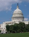 United states capitol building with lawn and trees Royalty Free Stock Photos