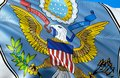United States Great Seal Flag....