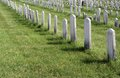 Unmarked Graves Stock Photos