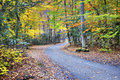 Unpaved Fall road with colorful trees Royalty Free Stock Image