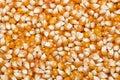 Unpopped Popcorn Royalty Free Stock Photo