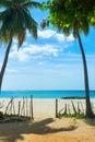 Unspoiled idyllic beach in sri lanka Stock Photos