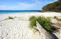 Unspoilt natural beach greenfields jervis bay is a rustic and in australia it is located along the white sands Stock Photos