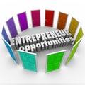 Unternehmer opportunities many business wege Lizenzfreie Stockfotografie