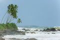 Untouched tropical beach of sri lanka Royalty Free Stock Images