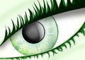 Unusual eye Royalty Free Stock Image