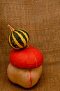 Unusual orange hat pumpkin and small watermelon autumn harvest on sackcloth jute background Stock Images