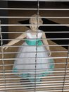 Unusual out of business store mannequin Royalty Free Stock Photo