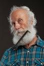 Uomo anziano con un grande sorriso del wiith lungo della barba Fotografia Stock Libera da Diritti